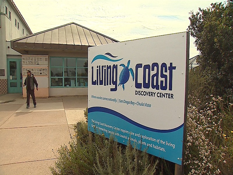 The Living Coast Discovery Center is shown in this undated photo.
