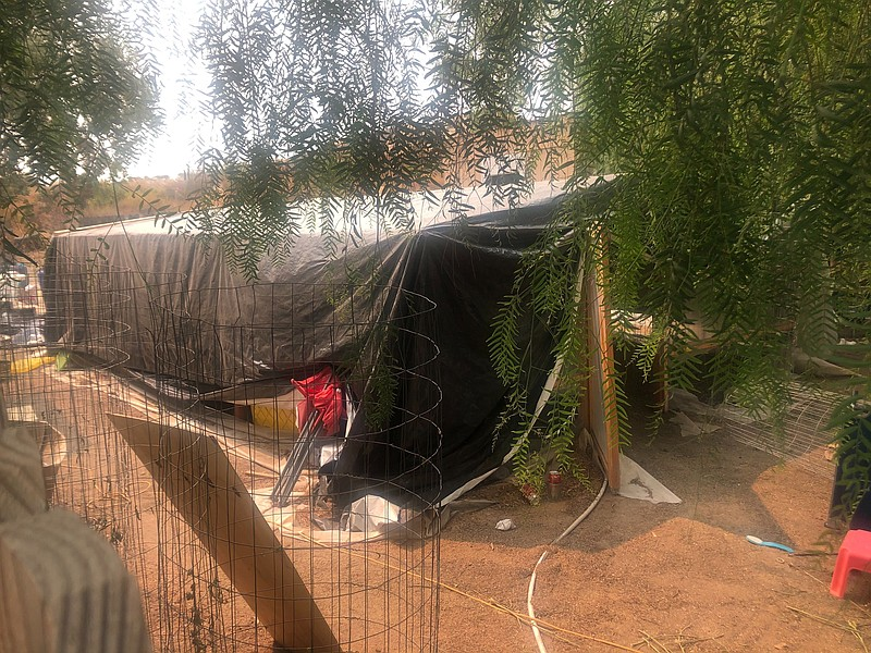 What appears to be a makeshift greenhouse is seen behind a home where killing...