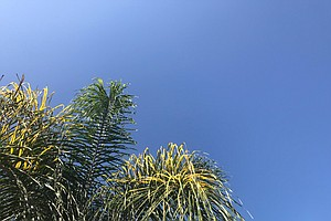 Warm Weather, Clear Skies Expected Across San Diego County
