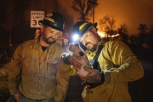 Photo for Dying Winds Give Crews Hope In Northern California Fires