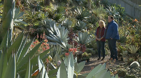 Host and garden expert Nan Sterman takes a tour of renown...