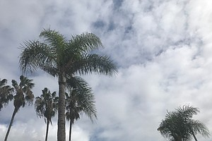 Photo for Winds, Scattered Light Showers Forecast For San Diego County