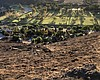 A burned hillside is pictured after a brush fir...
