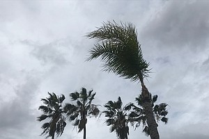 Santa Ana Winds Lash San Diego Area