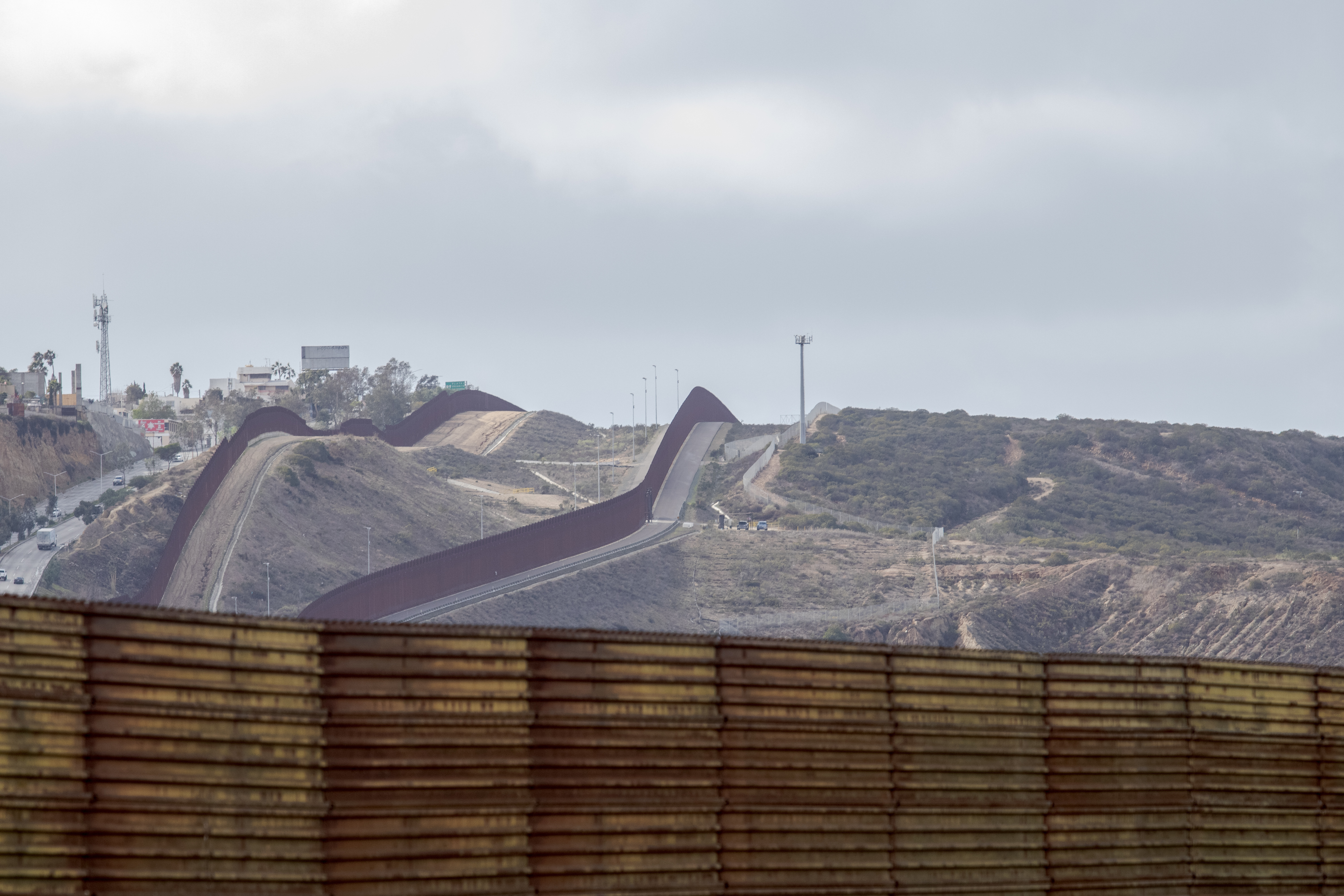 Border & Immigration cover image