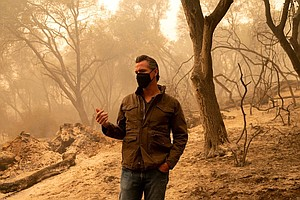 Photo for Environment Experts To Newsom: Now's Your Moment