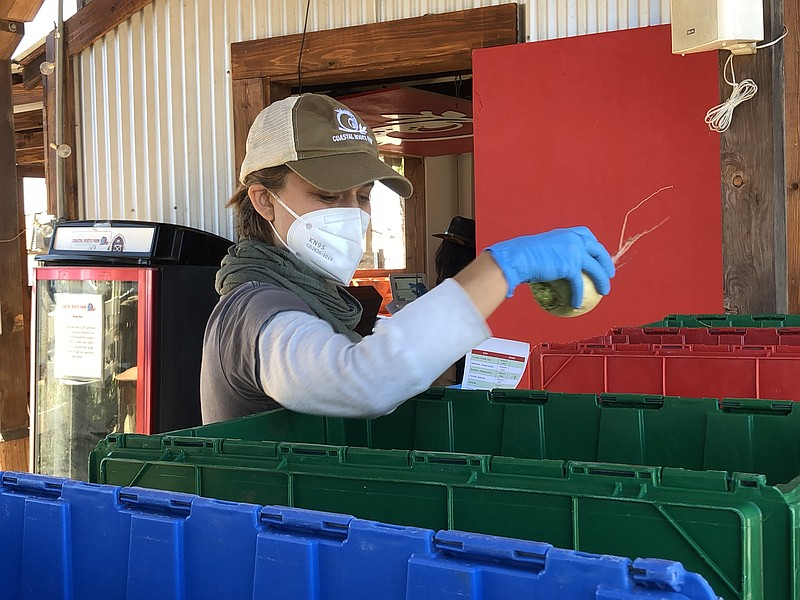 A Coastal Roots Farm worker moves vegetables into different boxes, Feb. 19, 2...