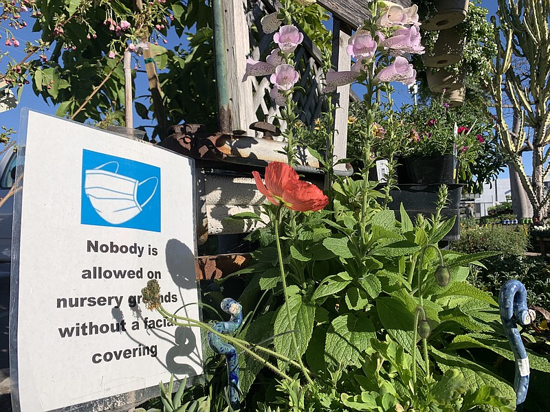 A sign advises of COVID-19 prevention measures at Walter Andersen Nursery in ...