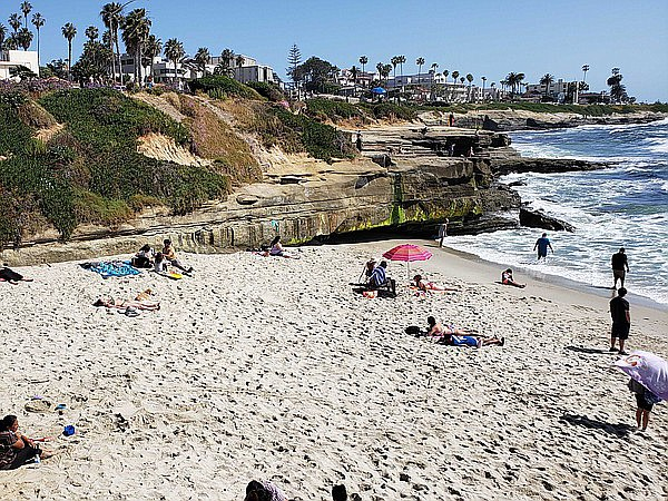 People sunbathing and lounging on the beach at La Jolla Children's Pool beach...