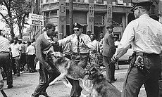A 17-year-old Civil Rights demonstrator is atta...