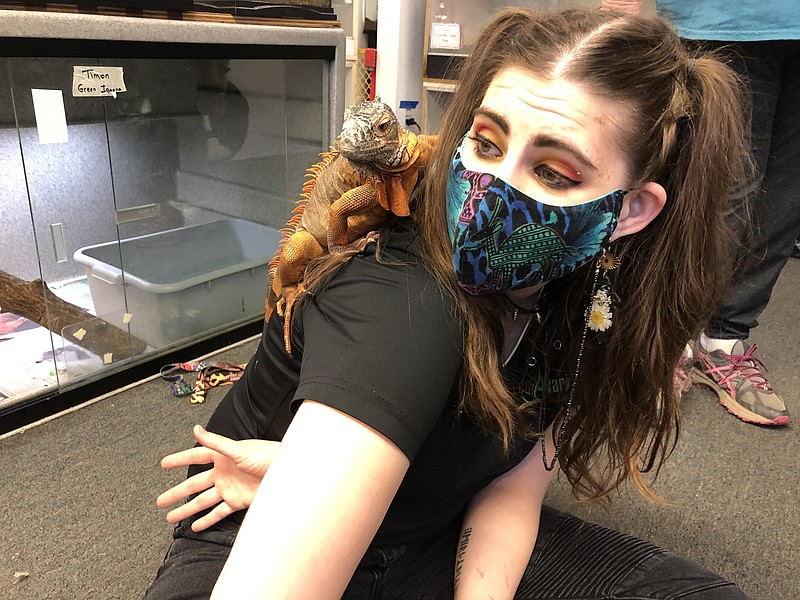 Shelly Oneida allows her reptile friend to perch on her shoulder at the Escon...