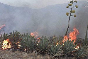 Photo for Southern Fire 90% Contained As California Braces For Another Active Wildfire ...