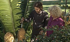 Director of Horticulture at San Diego Botanic G...
