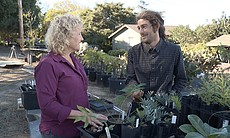 Host Nan Sterman and Director of Horticulture a...