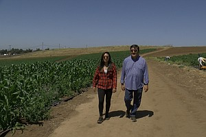 Photo for Fourth Generation Of The Yasukochi Family Continues Farming In North County