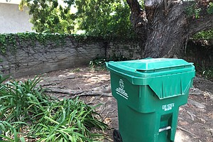 Photo for What You Need To Know About Changes Coming To San Diego's Green Waste Recycling