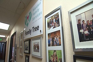 Photo for A Spotlight On San Diego's Foster Care System Following The Pandemic