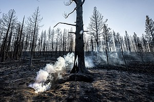 Photo for Western Wildfires Grow, But Better Weather Helps Crews