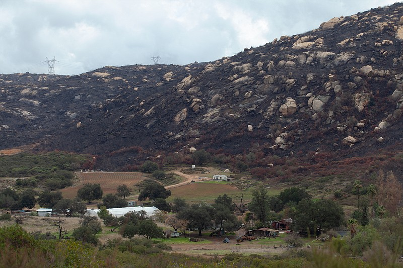 Burn scars from the Valley Fire are seen from Hidden Glen Road in Alpine on J...