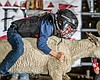 A boy participating in the Mutton Bustin' demon...