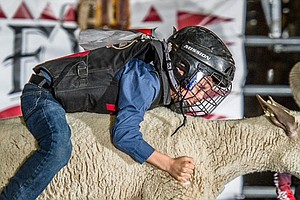 Photo for Ramona Country Fair Kicks Off 50th Year With Western Shows, Carnival Rides