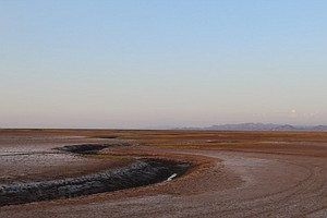 Photo for Even In An Epically Dry Year Water Flows Into Parched Colorado River Delta
