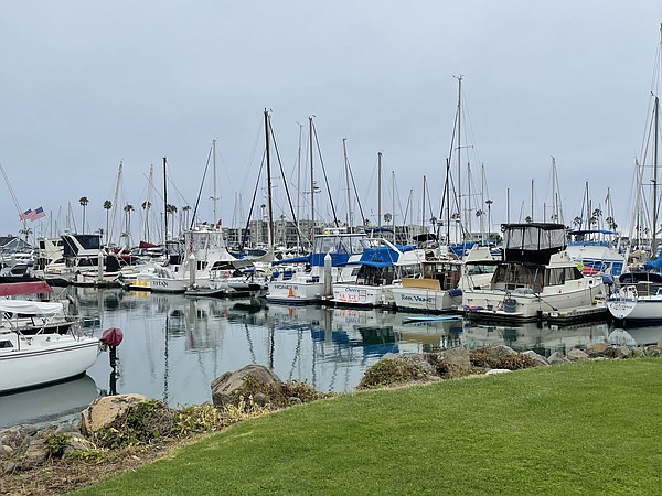 Boats lined up at the Oceanside Harbor. July 30, 2021.