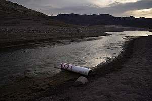 Photo for Explainer: Western States Face First Federal Water Cuts