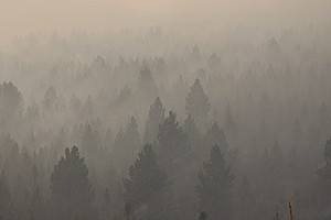 Photo for Gaps In US Wildfire Smoke Warning Network Leave Many Exposed