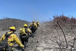 Photo for Burn Zone Of 1,427-Acre Wildfire At San Diego-Riverside Line 80% Contained