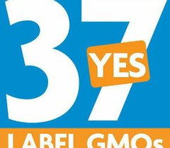 Avatar for DaleProp37