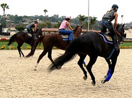 New Synthetic Race Track Faces First Test to Prevent Hors...