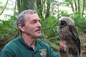 To Save Threatened Owl, Another Species Is Shot