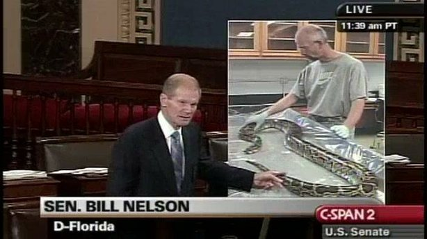 Sen. Bill Nelson (D-Fla.) with a floor chart featuring a photo of a snake.