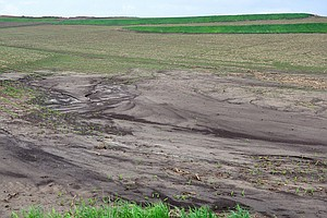 Heavy Rains Send Iowa's Precious Soil Downriver